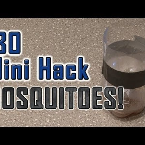 Mosquito Bottle Trap
